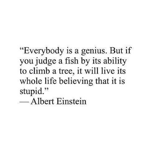 """Albert Einstein: """"Everybody is a genius. But if  you judge a fish by its ability  to climb a tree, it will live its  whole life believing that it is  stupid.""""  1  22  Albert Einstein"""