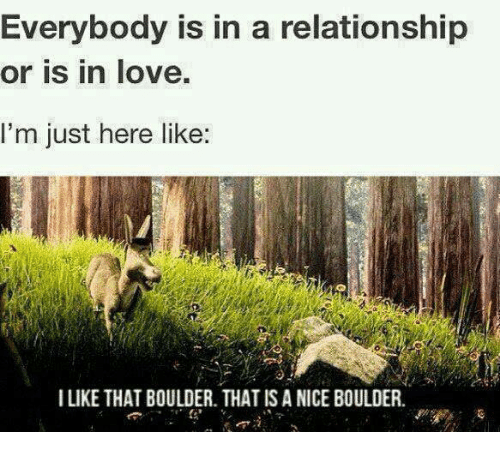 Funny: Everybody is in a relationship  or is in love.  I'm just here like  I LIKE THAT BOULDER. THAT IS A NICE BOULDER.