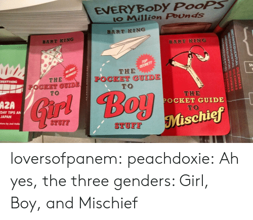 holla: EVERYBoDy PooPS  to Million Pounds  BART KING  BART KING  Sh  THE  OCKET GUIDE  TO  THE  POCKET GUIDE  TO  THE  POCKET GUIDE  TO  AZA  ir  DAY TIPS AN  JAPAN  Mischief  STUFF  TUF  tions by Joel Holla loversofpanem:  peachdoxie:  Ah yes, the three genders: Girl, Boy, and Mischief