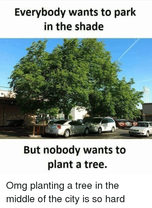 Omg, Shade, and The Middle: Everybody wants to park  in the shade  But nobody wants to  plant a tree.