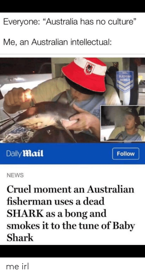 "rebels: Everyone: ""Australia has no culture""  Me, an Australian intellectual:  NRL  SLEDGING  REBELS  DailyMail  Follow  NEWS  Cruel moment an Australian  fisherman uses a dead  SHARK as a bong and  smokes it to the tune of Baby  Shark me irl"