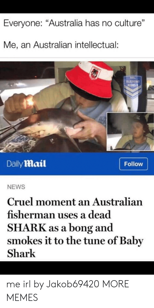 "rebels: Everyone: ""Australia has no culture""  Me, an Australian intellectual:  NRL  SLEDGING  REBELS  DailyMail  Follow  NEWS  Cruel moment an Australian  fisherman uses a dead  SHARK as a bong and  smokes it to the tune of Baby  Shark me irl by Jakob69420 MORE MEMES"