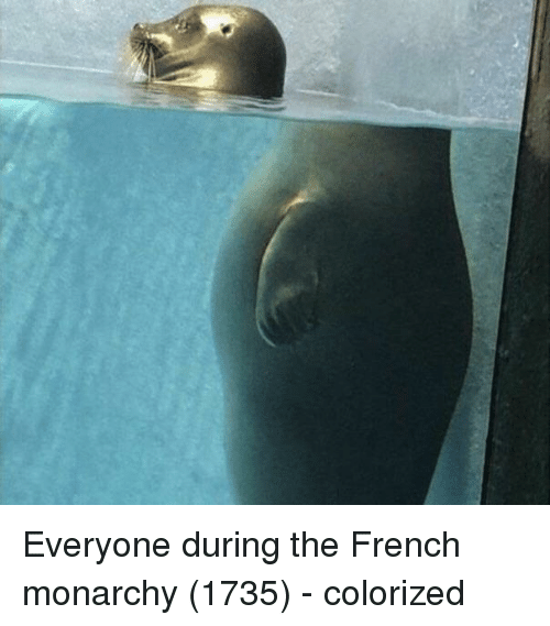 Monarchy: Everyone during the French monarchy (1735) - colorized