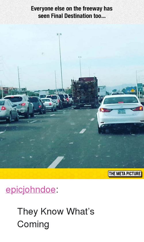 """Final Destination: Everyone else on the freeway has  seen Final Destination too...  aTa  1t  曳  THE META PICTURE <p><a href=""""https://epicjohndoe.tumblr.com/post/172661803069/they-know-whats-coming"""" class=""""tumblr_blog"""">epicjohndoe</a>:</p>  <blockquote><p>They Know What's Coming</p></blockquote>"""