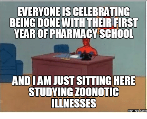 Done With Today Meme: EVERYONE IS CELEBRATING  BEING DONE WITH  THEIR FIRST  YEAR OF PHARMACY SCHOOL  ANDIAM JUST SITTING HERE  STUDYING ZooNOTIC  ILLNESSES  memes Conn