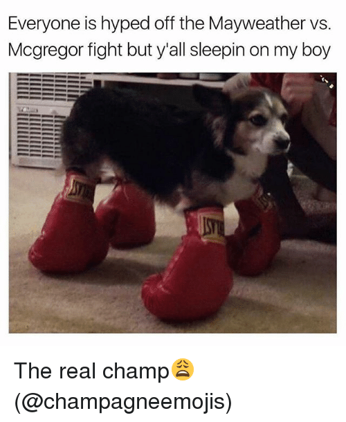 Mayweather, Memes, and The Real: Everyone is hyped off the Mayweather vs.  Mcgregor fight but y al sleepin on my boy The real champ😩 (@champagneemojis)