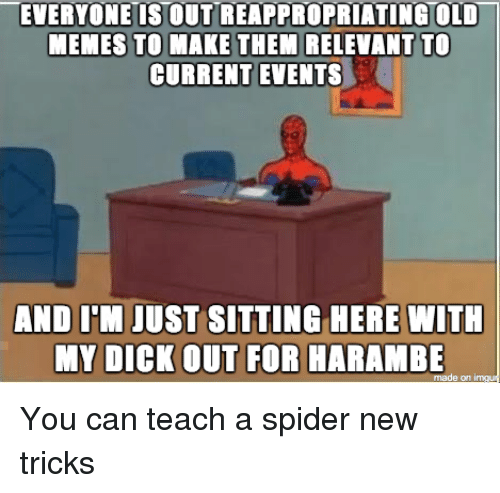 Funny Memes About Current Events : Funny meme memes and spider of on sizzle