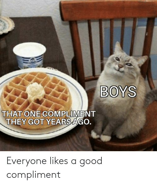 compliment: Everyone likes a good compliment