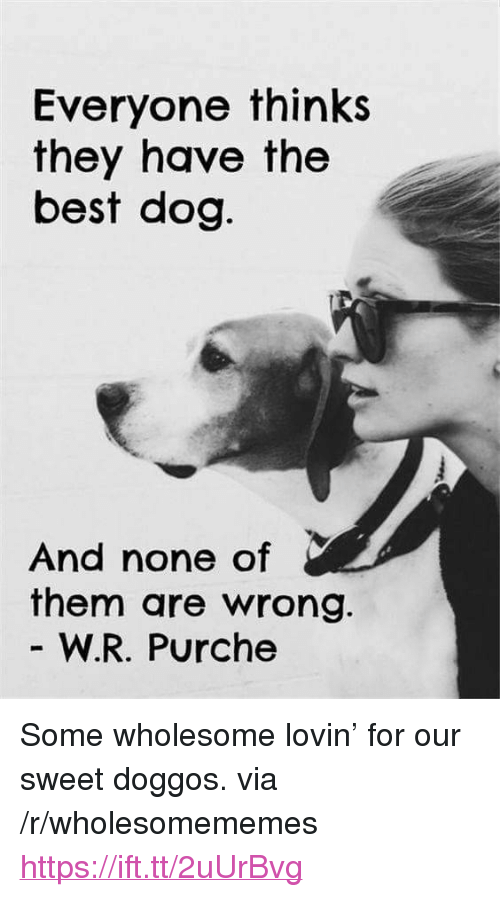 "Best Dog: Everyone thinks  they have the  best dog  And none of  them are wrong.  W.R. Purche <p>Some wholesome lovin&rsquo; for our sweet doggos. via /r/wholesomememes <a href=""https://ift.tt/2uUrBvg"">https://ift.tt/2uUrBvg</a></p>"