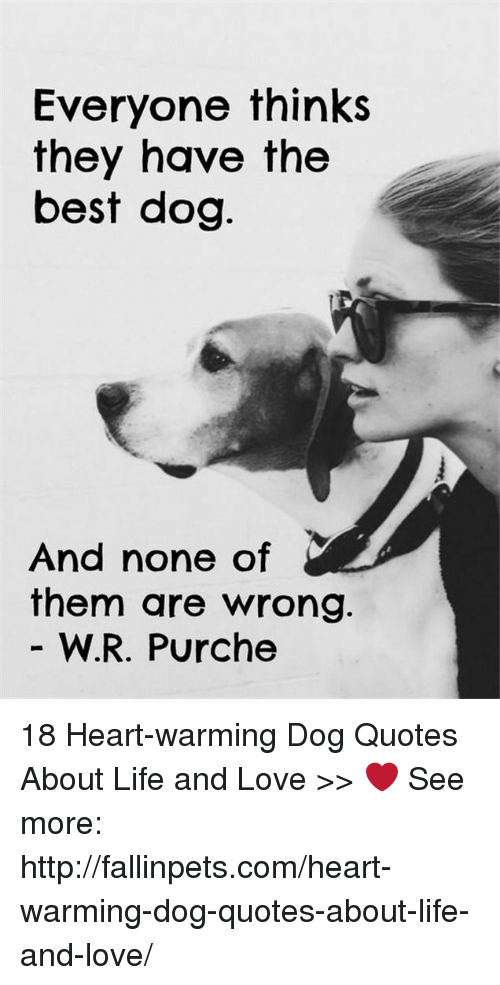 Best Dog: Everyone thinks  they have the  best dog  And none of  them are wrong.  W.R. Purche 18 Heart-warming Dog Quotes About Life and Love >>  ❤️ See more: http://fallinpets.com/heart-warming-dog-quotes-about-life-and-love/