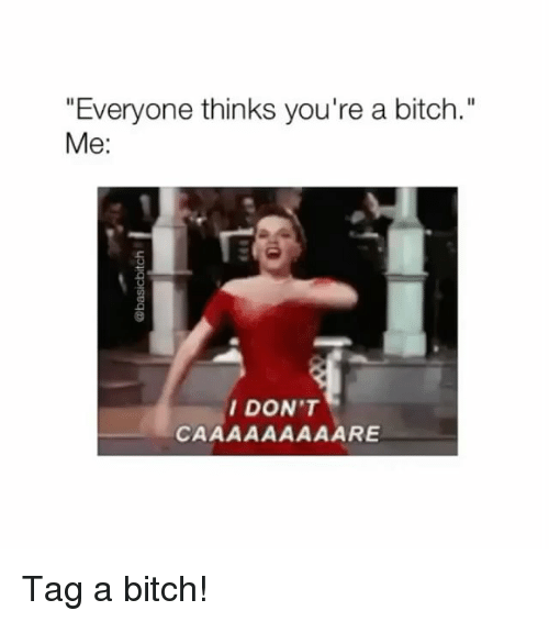 """Bitch, Girl Memes, and Youre: """"Everyone thinks you're a bitch.""""  Me:  DON'T Tag a bitch!"""