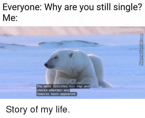 Memes, 🤖, and Story of My Life: Everyone: Why are you still single?  Me:  The male finishes his nap and  checks whether any  females have appeared. Story of my life.