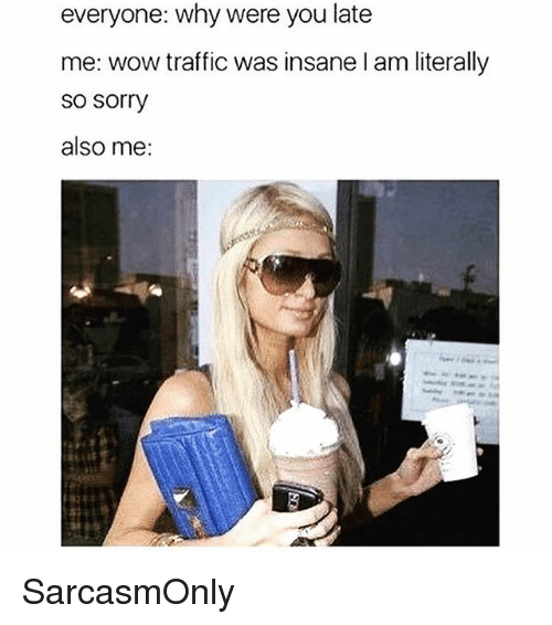 Funny, Memes, and Sorry: everyone: why were you late  me: wow traffic was insane l am literally  so sorry  also me: SarcasmOnly