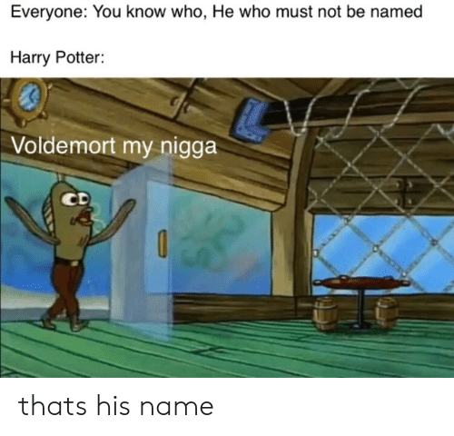 you-know-who: Everyone: You know who, He who must not be named  Harry Potter:  Voldemort my nigga  CD thats his name