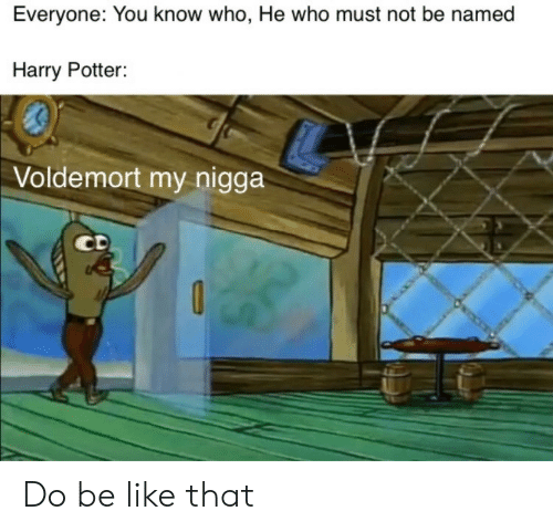 you-know-who: Everyone: You know who, He who must not be named  Harry Potter:  Voldemort my nigga  CD Do be like that