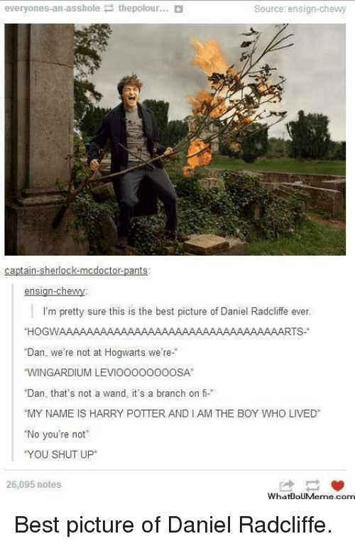 """andie: everyones-an-asshole thepolour...  Source: ensign-chewy  ants  Ca  n-che  ens  I'm pretty sure this is the best picture of Daniel Radcliffe ever.  HOGWAAAAAAAAAAAAAAAAAAAAAAAAAAAAAAAAARTS  Dan  we're not at Hogwarts wi  e re  """"WINGARDIUM LEVIOOOOOOOOSA  Dan, that's not a wand, it's a branch on fi  """"MY NAME IS HARRY POTTER ANDI AM THE BOY WHO LIVED  No you're not  """"YOU SHUT UP  26,095 notes.  YhatioUMgme comm Best picture of Daniel Radcliffe."""