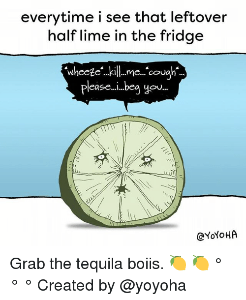 Memes, Yo, and Tequila: everytime i see that leftover  half lime in the fridge  Wheeteme. cou  pleas ...beg yo  @YoYoHA Grab the tequila boiis. 🍋 🍋 ° ° ° Created by @yoyoha