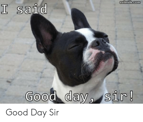 I Said Good Day Meme: evilmilk.com  I said  Good day, sir! Good Day Sir