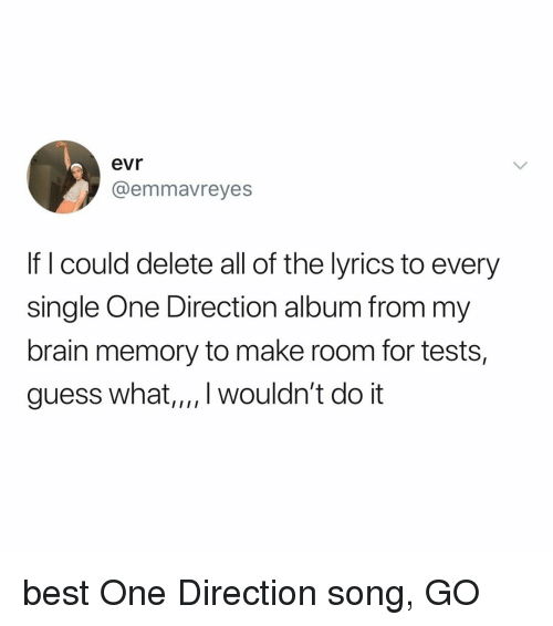 One Direction, Best, and Brain: evr  @emmavreyes  If I could delete all of the lyrics to every  single One Direction album from my  brain memory to make room for tests,  guess what,,,. wouldn't do it best One Direction song, GO