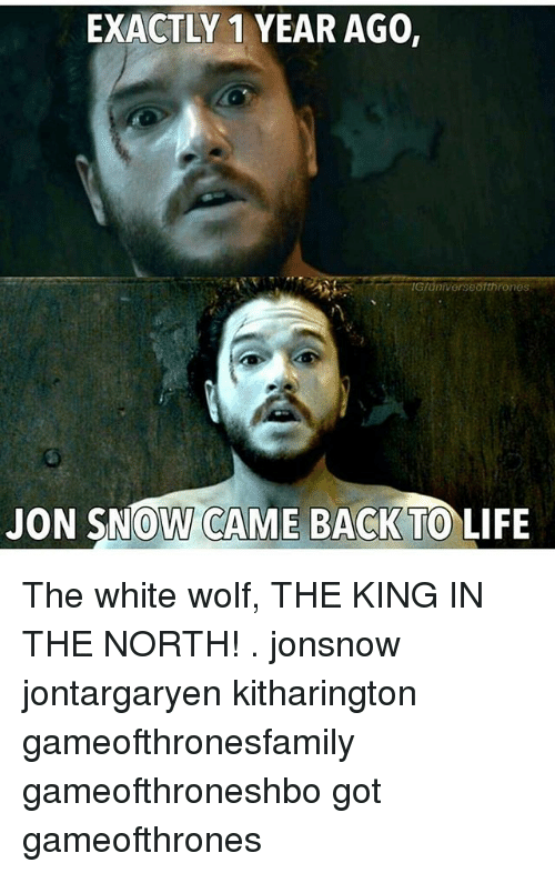 Life, Memes, and Jon Snow: EXACTLY 1 YEAR AGO,  JON SNOW CAME BACK TO LIFE The white wolf, THE KING IN THE NORTH! . jonsnow jontargaryen kitharington gameofthronesfamily gameofthroneshbo got gameofthrones