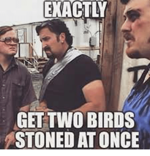 Get Two Birds Stoned At Once