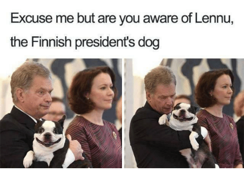 Presidents: Excuse me but are you aware of Lennu,  the Finnish presidents dog