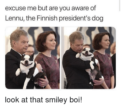 Presidents: excuse me but are you aware of  Lennu, the Finnish president's dog look at that smiley boi!