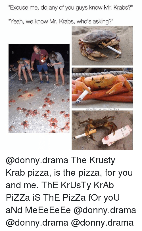 "Memes, Mr. Krabs, and Pizza: ""Excuse me, do any of you guys know Mr. Krabs?""  Yeah, we know Mr. Krabs, who's asking?"" @donny.drama The Krusty Krab pizza, is the pizza, for you and me. ThE KrUsTy KrAb PiZZa iS ThE PizZa fOr yoU aNd MeEeEeEe @donny.drama @donny.drama @donny.drama"