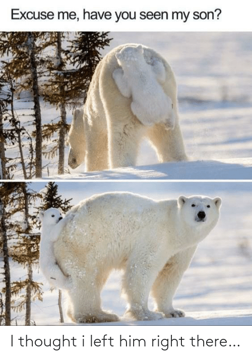 right there: Excuse me, have you seen my son? I thought i left him right there…