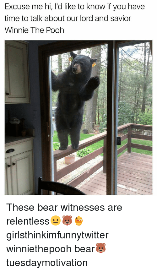 Funny, Winnie the Pooh, and Bear: Excuse me hi, l'd like to know if you have  time to talk about our lord and savior  Winnie The Pooh These bear witnesses are relentless😐🐻🍯 girlsthinkimfunnytwitter winniethepooh bear🐻 tuesdaymotivation