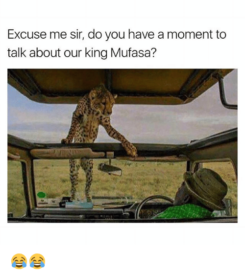 Funny, Mufasa, and King: Excuse me sir, do you have a moment to  talk about our king Mufasa? 😂😂