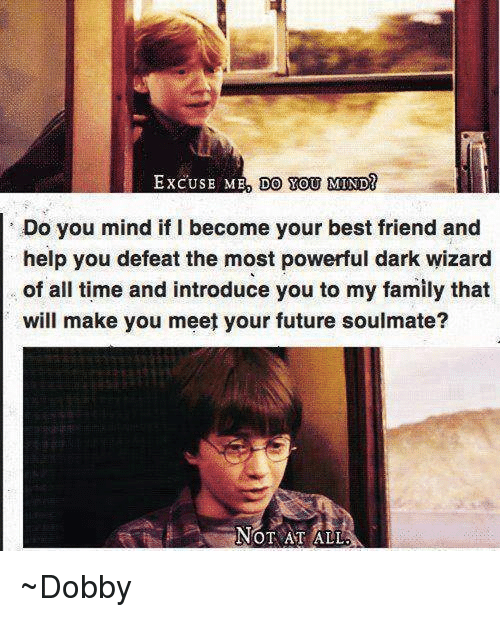 Best Friend, Memes, and Wizards: EXCUSE MED DO YOU MIND  Do you mind if I become your best friend and  help you defeat the most powerful dark wizard  of all time and introduce you to my family that  will make you meet your future soulmate?  NOT AT ALL ~Dobby