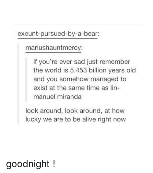 Alive, Tumblr, and Bear: exeunt-pursued-by-a-bear:  mariushauntmercy:  if you're ever sad just remember  the world is 5.453 billion years old  and you somehow managed to  exist at the same time as lin-  manuel miranda  look around, look around, at how  lucky we are to be alive right now goodnight !