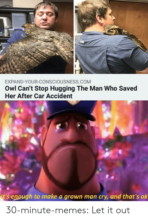 hugging: EXPAND-YOUR-CONSCIOUSNESS.COM  Owl Can't Stop Hugging The Man Who Saved  Her After Car Accident  t's enough to make a grown man cry, and that's ok 30-minute-memes:  Let it out