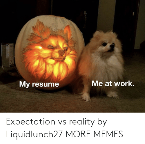 Reality: Expectation vs reality by Liquidlunch27 MORE MEMES