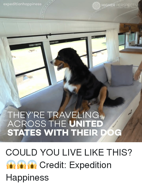 Dogs, Memes, and Happy: expeditionhappiness  HIGHER PERSPECTIVE  THEY'RE TRAVELING  ACROSS THE UNITED  STATES WITH THEIR DOG COULD YOU LIVE LIKE THIS? 😱😱😱  Credit: Expedition Happiness