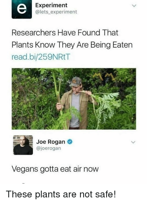 Joe Rogan, Memes, and 🤖: Experiment  @lets experiment  Researchers Have Found That  Plants Know They Are Being Eaten  read.bi/259NRtT  Joe Rogan  @joerogan  Vegans gotta eat air now These plants are not safe!