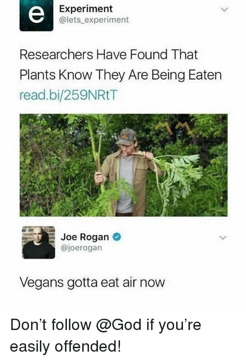 God, Joe Rogan, and Memes: Experiment  @lets experiment  Researchers Have Found That  Plants Know They Are Being Eaten  read.bi/259NRtT  Joe Rogan  @joerogarn  Vegans gotta eat air now Don't follow @God if you're easily offended!