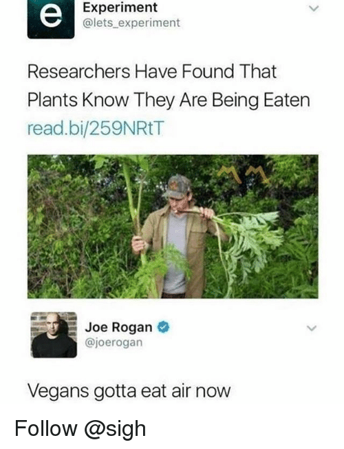 Joe Rogan, Trendy, and Air: Experiment  @lets experiment  Researchers Have Found That  Plants Know They Are Being Eaten  read.bi/259NRtT  Joe Rogan  @joerogarn  Vegans gotta eat air now Follow @sigh
