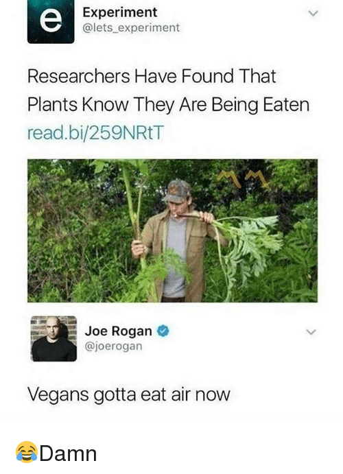 Joe Rogan, Memes, and 🤖: Experiment  @lets experiment  Researchers Have Found That  Plants Know They Are Being Eaten  read.bi/259NRtT  Joe Rogan  @joerogan  Vegans gotta eat air now 😂Damn