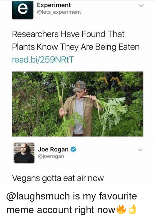 rogan: Experiment  @lets experiment  Researchers Have Found That  Plants Know They Are Being Eaten  read.bi/259NRtT  Ou/  loe Rogan  @joerogan  Vegans gotta eat air now @laughsmuch is my favourite meme account right now🔥👌