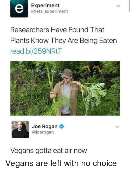 Joe Rogan: Experiment  @lets_ experiment  Researchers Have Found That  Plants Know They Are Being Eaten  read.bi/259NRtT  Joe Rogan  @joerogan  Vegans gotta eat air now Vegans are left with no choice