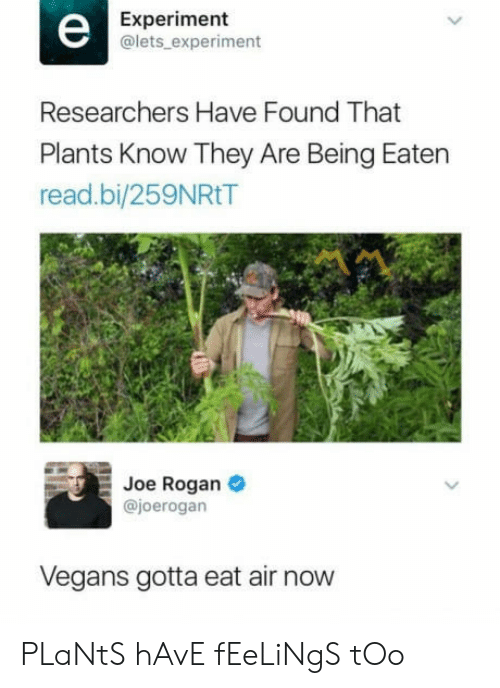 Joe Rogan: Experiment  @lets experiment  Researchers Have Found That  Plants Know They Are Being Eaten  read.bi/259NRtT  Joe Rogan  @joerogan  Vegans gotta eat air now  PLaNtS hAvE fEeLiNgS tOo