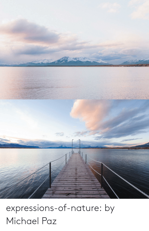 Expressions: expressions-of-nature:  by Michael Paz