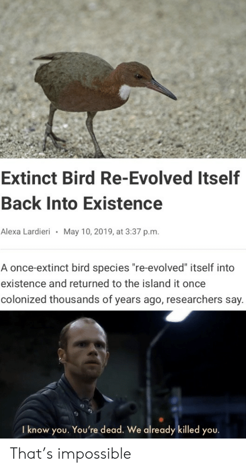 """the island: Extinct Bird Re-Evolved Itself  Back Into Existence  Alexa Lardieri  May 10, 2019, at 3:37 p.m.  A once-extinct bird species """"re-evolved"""" itself into  existence and returned to the island it once  colonized thousands of years ago, researchers say.  I know you. You're dead. We already killed you. That's impossible"""