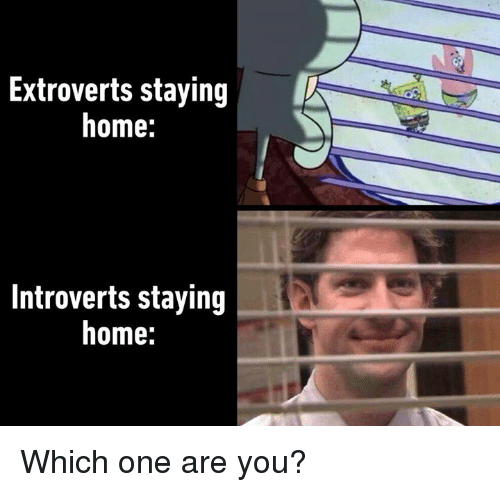 Staying Home: Extroverts staying  home:  Introverts staying  home: Which one are you?