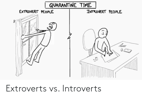 introverts: Extroverts vs. Introverts