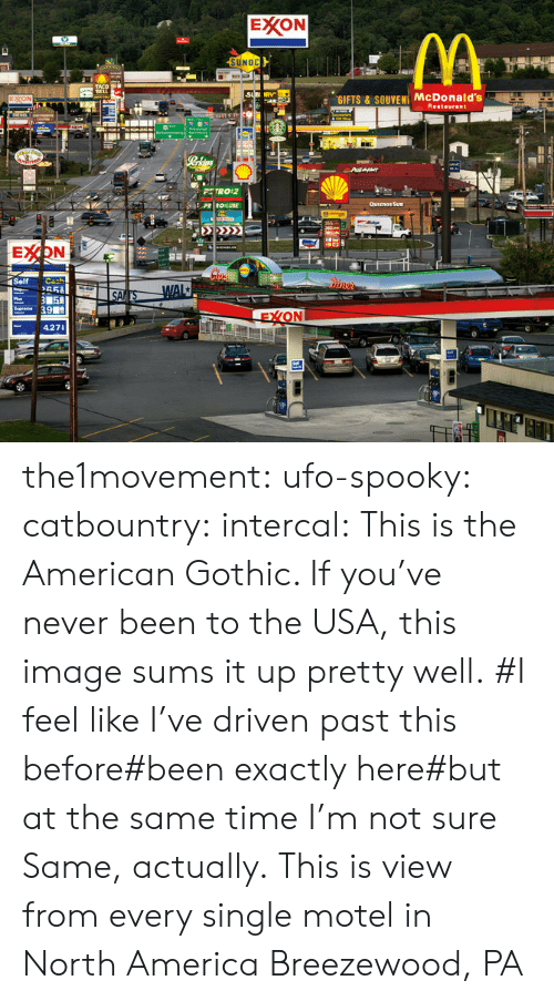 America, McDonalds, and Tumblr: EXXON  UNOC  GIFTS & SOUVENI McDonald's  staurant  PETRO 2  427 the1movement:  ufo-spooky: catbountry:  intercal:  This is the American Gothic. If you've never been to the USA, this image sums it up pretty well.    #I feel like I've driven past this before#been exactly here#but at the same time I'm not sure   Same, actually.  This is view from every single motel in North America   Breezewood, PA