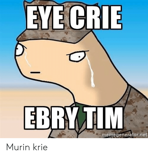 Net, Eye, and Tim: EYE CRIE  EBRY TIM  memegenerator.net Murin krie