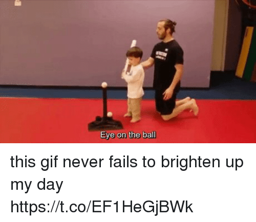 Gif, Girl Memes, and Never: Eye on the ball this gif never fails to brighten up my day https://t.co/EF1HeGjBWk